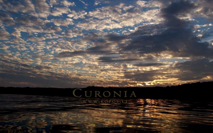 Curonia colors - Darkness