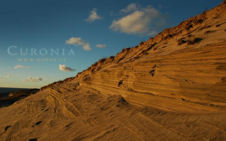 Curonia colors - Dunes
